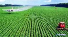 农业方面的实用新型专利